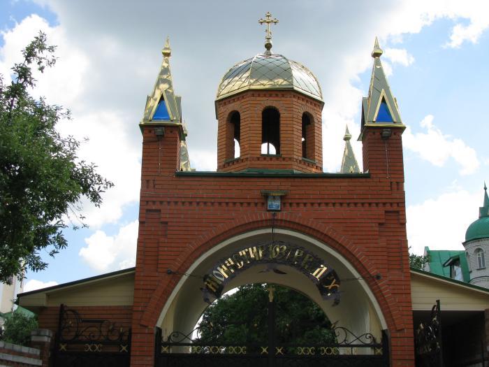 Ворота Мотронинський монастир