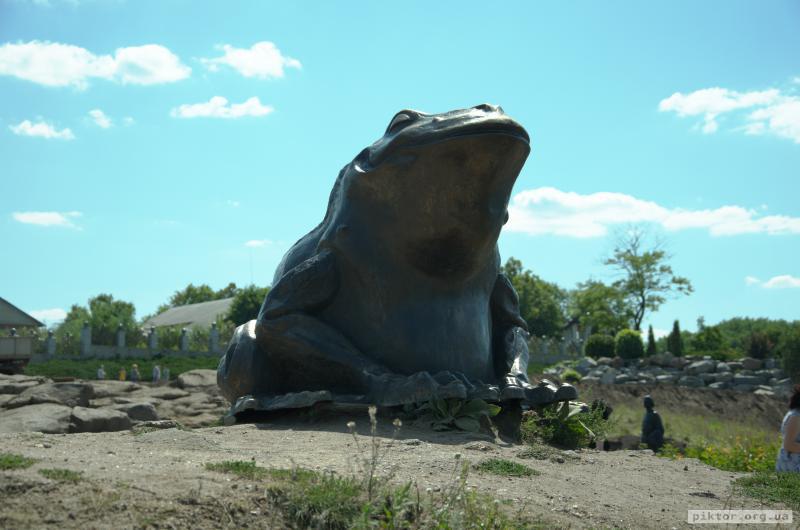 Велика жаба в Буках
