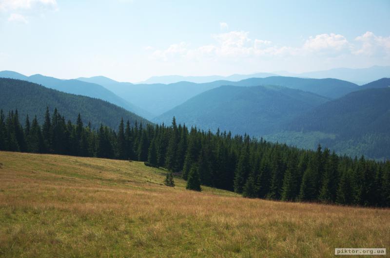 Карпатські краєвиди