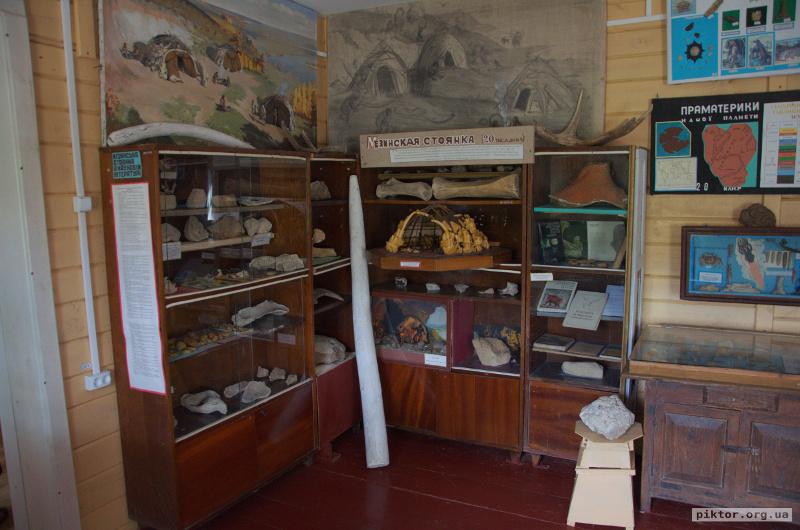 Кістки в музеї