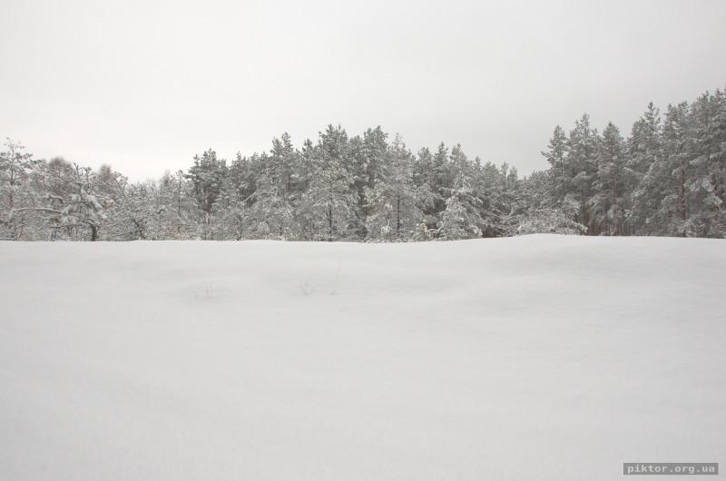 Зимова галявина