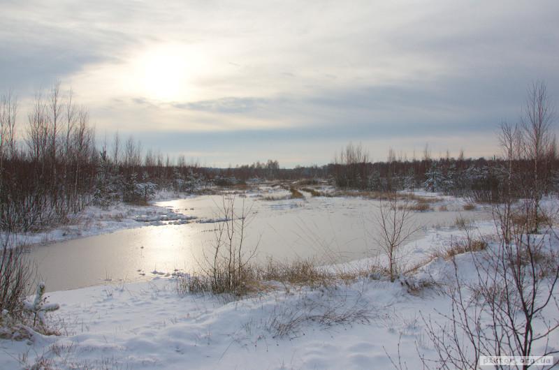 Зимове болото
