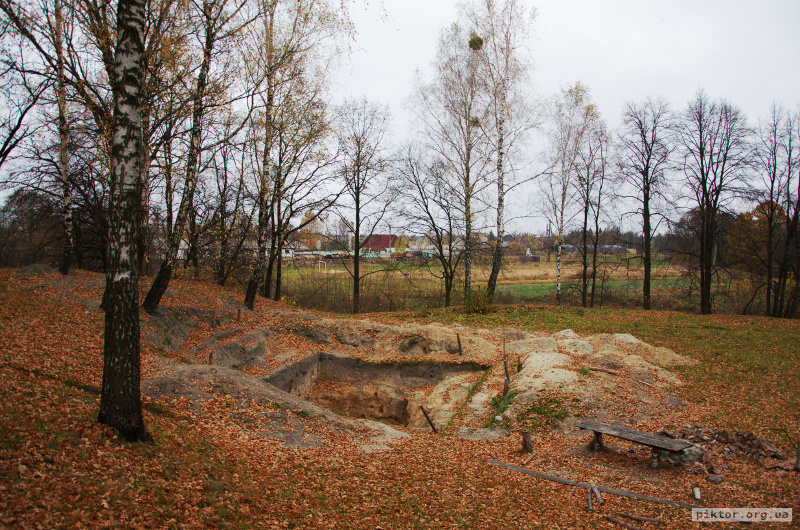 Розкопки городища