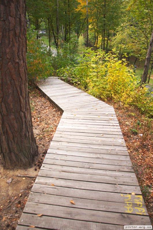 Дерев'яні доріжки