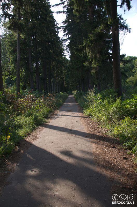 Парк Кочубея