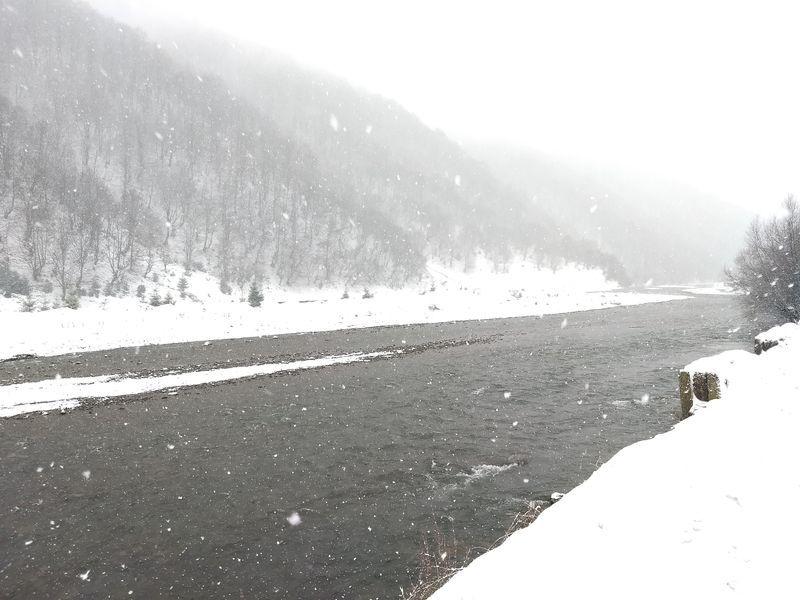 Сніг в Колочаві